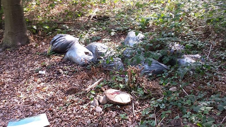 Wilder Müll im Diepeschrather Wald